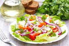 Salad made of fresh vegetables Royalty Free Stock Photography