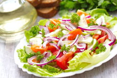 Salad made of fresh vegetables Royalty Free Stock Photo