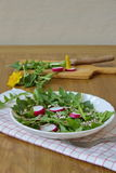 Salad made by leaves of dandelion, sunflower seeds and radish Royalty Free Stock Images