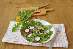 Salad made by leaves of dandelion, sunflower seeds and radish Stock Photo