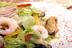Salad made of seafood Royalty Free Stock Images