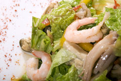 Salad made of seafood. Salad made of different seafood and vegetables stock images