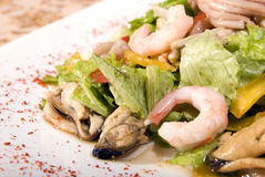 Salad made of seafood. Salad made of different seafood and vegetables royalty free stock images