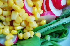 Salad with maize Royalty Free Stock Images