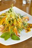 Salad with mango, shrimps and exotic sauce Royalty Free Stock Images