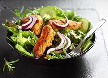 Salad with marinated chicken breast stripes royalty free stock photography