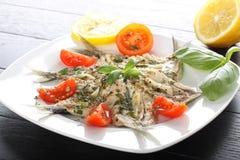 Salad marinated sardines with basil and tomato Stock Image