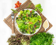 Salad meal on white dish. Preparing salad meal with fresh vegetables on white dish Stock Images