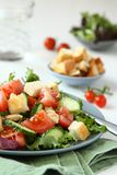 Salad with meat, cucumbers, tomatoes and croutons Royalty Free Stock Photos