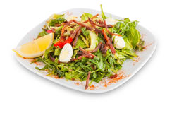 Salad with meat and greens. Royalty Free Stock Photos