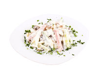 Salad with meat on plate Royalty Free Stock Image