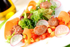 Salad with meat and vegetables Royalty Free Stock Photos