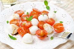 Salad with mini mozzarella, cherry tomatoes and basil Royalty Free Stock Photography
