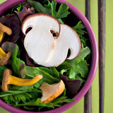 Salad Mix. With Mesclun and Mushroom Royalty Free Stock Images