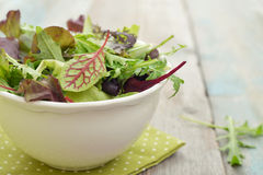 Salad mix Royalty Free Stock Image