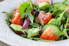 Salad mix with avocado tomato Royalty Free Stock Image