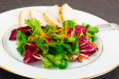 Salad Mix Batavian, Frise, Radicchio, Chicory  Chicken Stock Photos