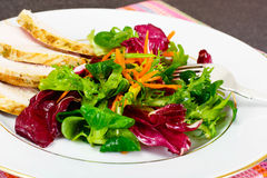 Salad Mix Batavian, Frise, Radicchio, Chicory  Chicken Royalty Free Stock Images