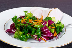 Salad Mix Batavian, Frise, Radicchio, Chicory  Chicken Royalty Free Stock Image