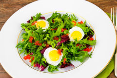 Salad Mix Batavian, Frise, Radicchio, Chicory, Dietary Mel Royalty Free Stock Image