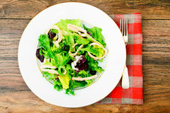 Salad Mix Batavian, Frise, Radicchio, Chicory, Squid Royalty Free Stock Photos