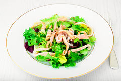 Salad Mix Batavian, Frise, Radicchio, Chicory, Squid Stock Images