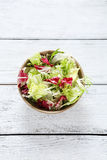 Salad mix in a bowl Stock Photography