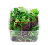 Salad mix in a box Royalty Free Stock Photos