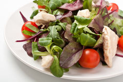 Salad mix with chicken breast Stock Images