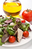 Salad mix with chicken breast Royalty Free Stock Images
