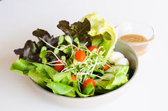 Salad mix eggs. And small tomato Royalty Free Stock Photo