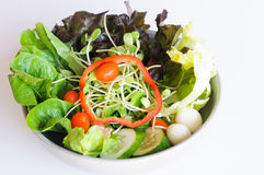 Salad mix eggs Stock Photography