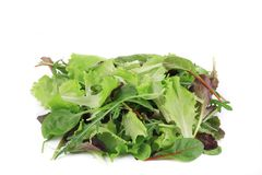 Salad mix. Royalty Free Stock Photography