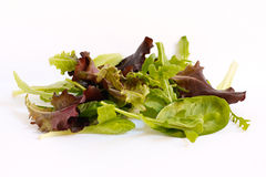 Salad mix leaves isolated on white Royalty Free Stock Photography