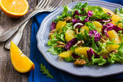 Salad mix with orange and walnuts Stock Photography