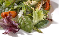 Salad mix with rucola, frisee, radicchio and lamb's lettuce. Royalty Free Stock Images