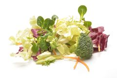 Salad mix with rucola, frisee, radicchio and lamb`s lettuce. Isolated on white background Royalty Free Stock Images