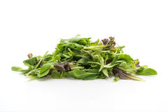 Salad mix with rucola, frisee, radicchio and lamb's lettuce. On white background Stock Photography