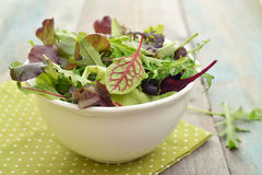 Salad mix Royalty Free Stock Photos