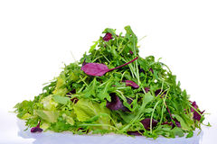 Salad mix with rucola, frisee, radicchio Stock Images