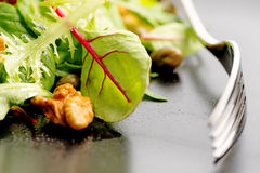 Salad mix with rucola, frisee, radicchio, lettuce and nuts on pl Stock Photography