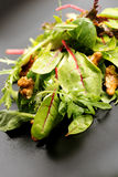 Salad mix with rucola, frisee, radicchio, lettuce and nuts on pl Royalty Free Stock Photos