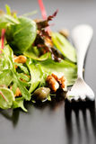 Salad mix with rucola, frisee, radicchio, lettuce and nuts on pl Royalty Free Stock Photo