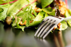 Salad mix with rucola, frisee, radicchio, lettuce and nuts on pl Royalty Free Stock Images