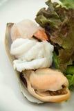 Salad Mix shrimp prawn shellfish Royalty Free Stock Photos