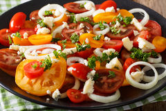 Salad of mix of tomatoes, onions and roquefort cheese close-up. Royalty Free Stock Image