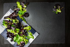 Salad mix, various lettuce leaves on cloth and textured backgrou Royalty Free Stock Photo