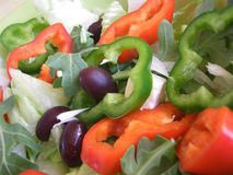 Salad mixed. Fresh green salad with red and green peppers and olives Royalty Free Stock Photos