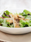 Salad from mixed herbs and fried chicken Stock Image