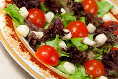 Salad with mozzarella Royalty Free Stock Photo
